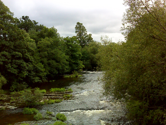 The River Severn at Dolerw Bridge