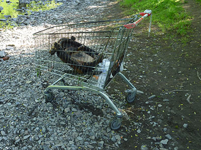 Trolley-at-Trehafren-1