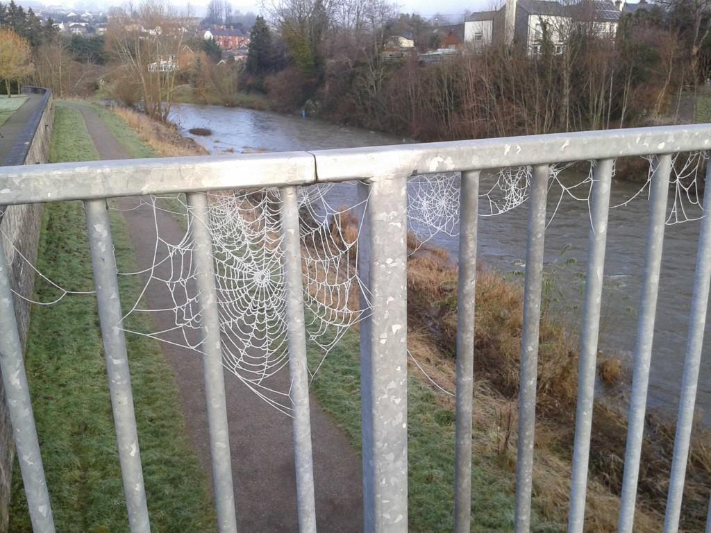 River web 4 1 2015 sm